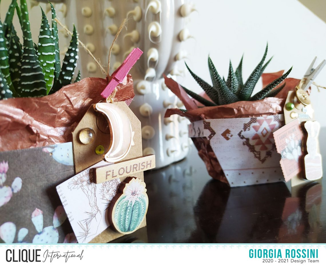Clique International – Handmade with love: succulents for my friends
